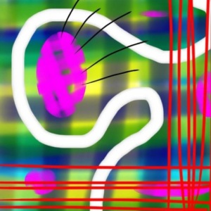 allison-image-2